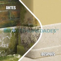 Limpiador biocida fuerte para aplicar en Tejados Fachadas y Suelos