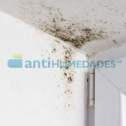 Detergente Limpiador 1 litro Idroless con propiedades biocidas y fungicidas