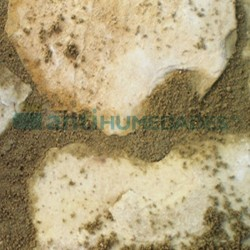Limpiador antimoho para piedras delicadas naturales o artificiales, Delicate Stone de Idroless