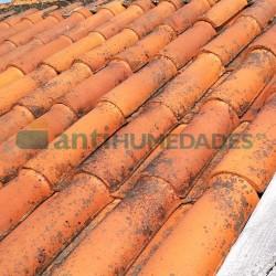 Limpiador antihumedad Bio 1 de Idroless para suelos, fachadas o tejados