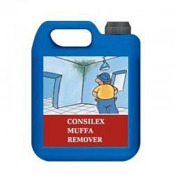 Limpiador Consilex Muffa Remover de Azichem: elimina moho, mugoss, lagas, bacterias... de multitud de superficies