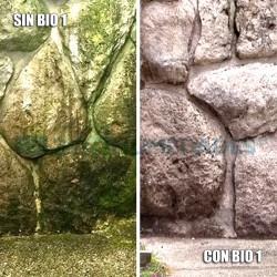 Limpiador Bio 1 Idroless para eliminar las manchas de humedad en cualquier superficie de exterior o interior