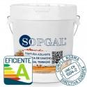 Aplicación de Aceite para Teka de Sopgal. Productos ecológico