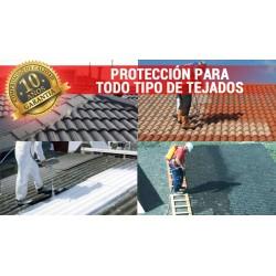 diferentes aplicaciones de paint new roof