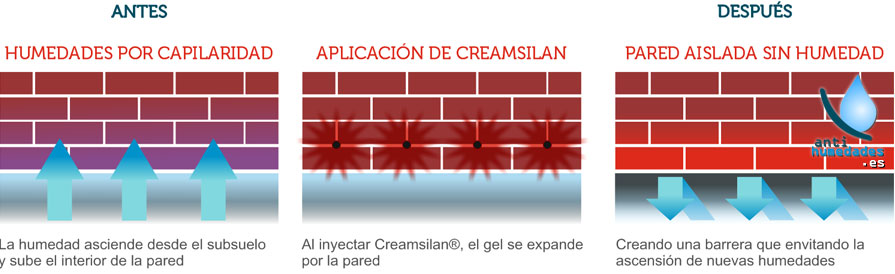 Pasos para reparar humedades por capilaridades