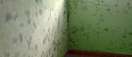 Problema de condensación en un techo por puente térmico