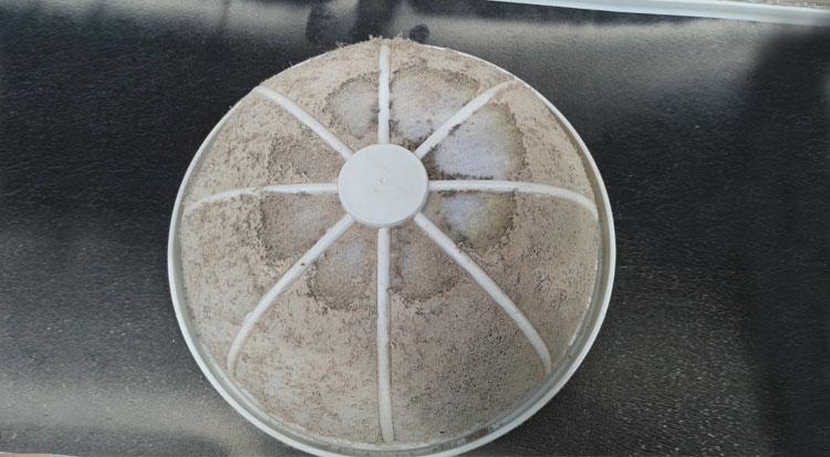 Lava el filtro bajo el grifo con agua corriendo y vuelve a colocarlo en su sitio