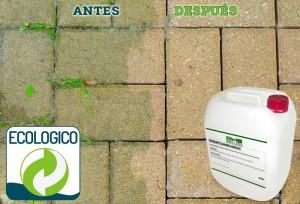 Limpieza de suelo de piedra con Detergente Fungicida Idroless