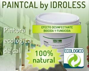 Pintura ecológica y desinfectante con efecto fungicida