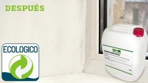Pared después de aplicar el detergente Idroless