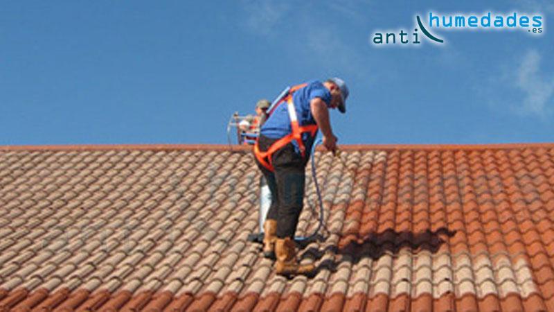 paint new roof se aplica fcilmente con pistola airless brocha o rodillo