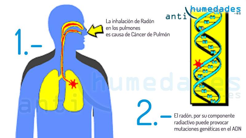 efectos del gas radon en la salud humana