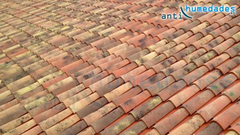 Paint New Roof puentea pequeñas grietas en las tejas
