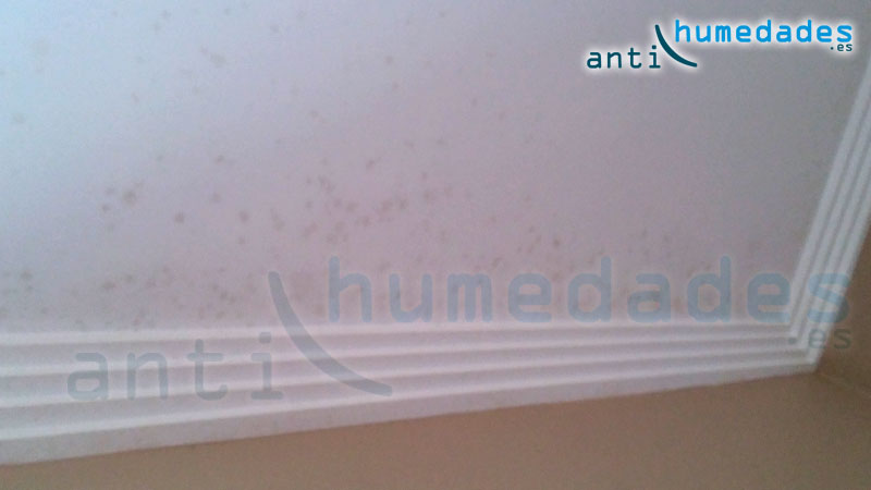 hogos condensacion techos