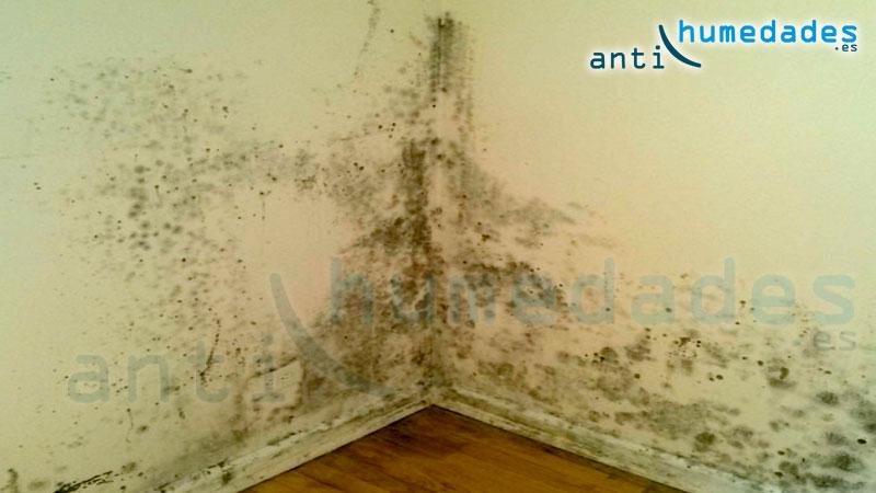 Humedades que causan moho en esquina pared antihumedades - Moho en la pared ...