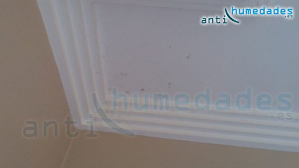 Manchas negras en los techos son condensacion soluciones para los problemas - Manchas de moho ...