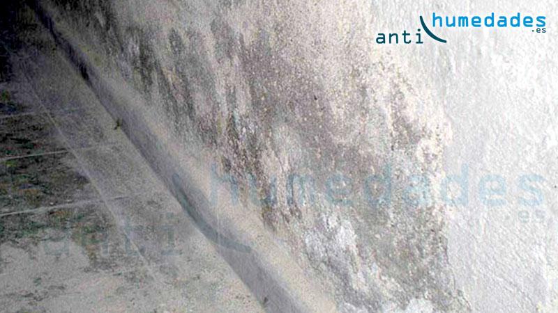 Las sales minerales continuan en la pared a pesar de solucionar el problema de capilaridad