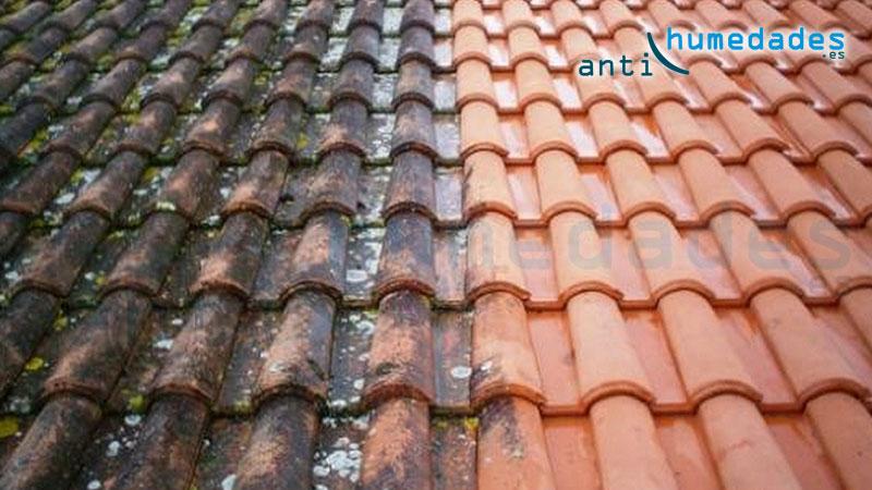 tejado antes y despues de limpiar con detergente limpiador de verdín