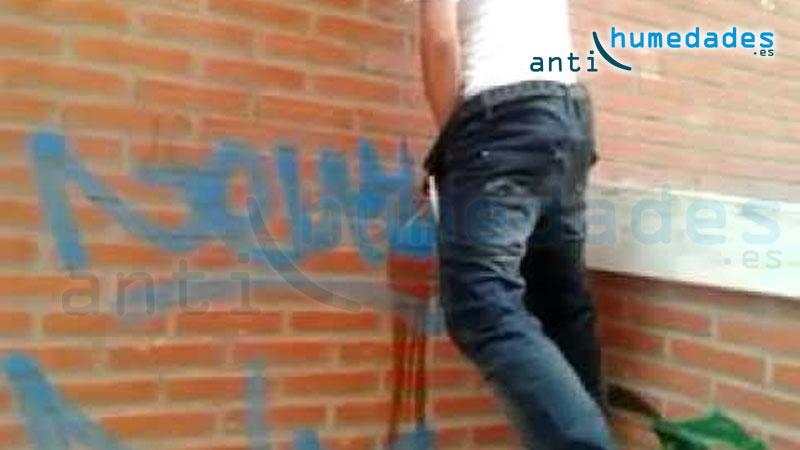 como evitar orina y grafittis