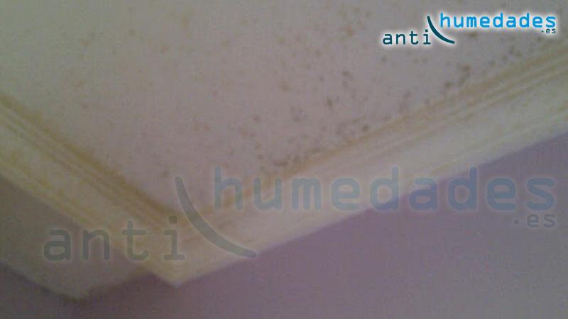 Utilizar productos no adecuados en el tejado puede provocar humedades por condensación