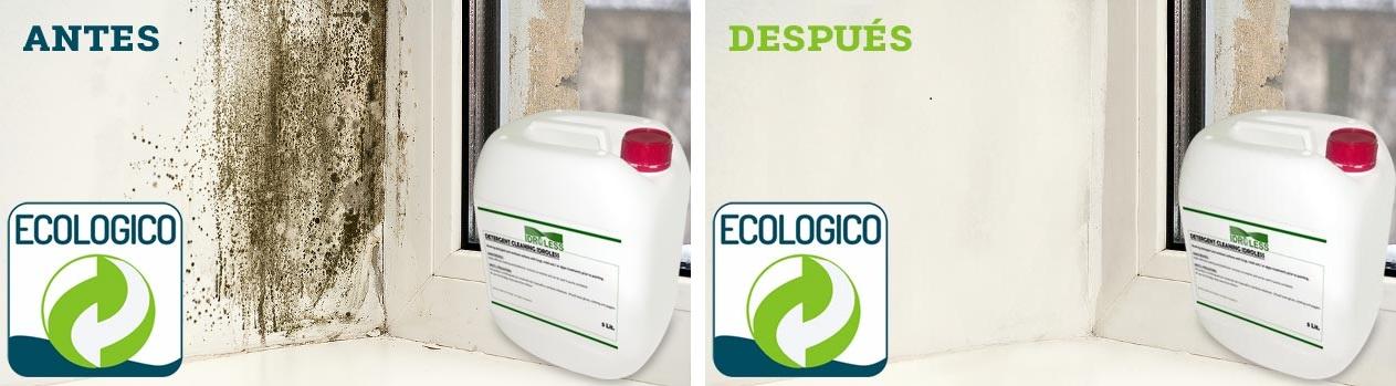 El detergente limpiar de Idroless permite eliminar el moho sin necesidad de aclarar la superficie