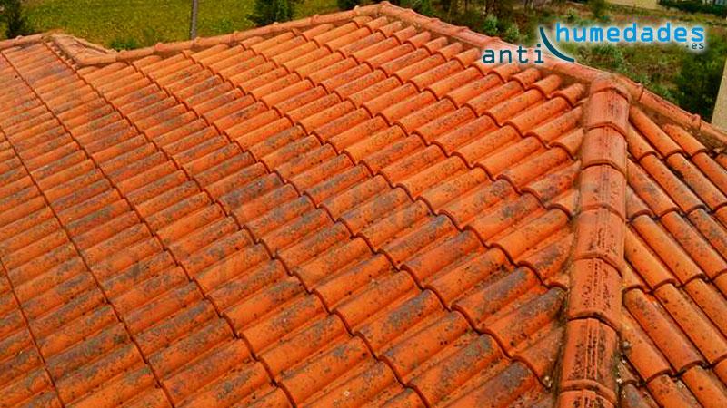 elimina los hierbajos y manchas de moho con un limpiador especfico para tejados