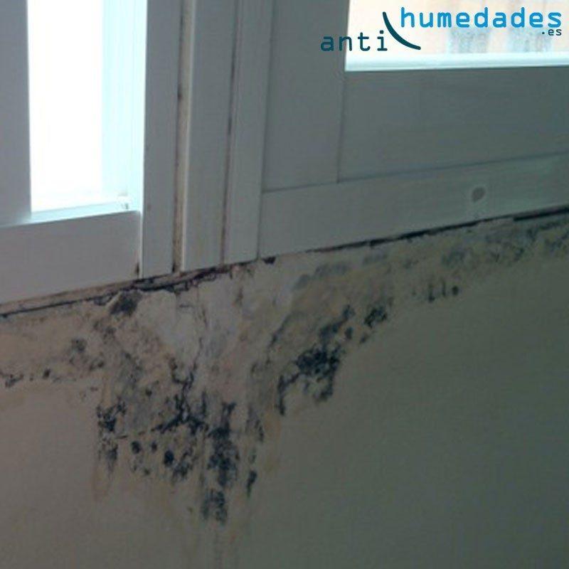Elimina para siempre los problemas de humedad y manchas de moho en las juntas de las ventanas con la pared
