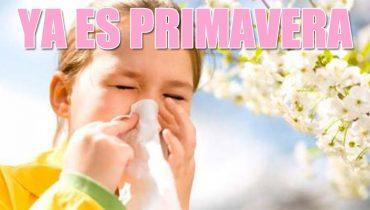 evita las alergias de primavera con un sistema de ventilación