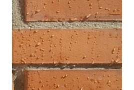 Hidrófugos incoloros que cortan de manera eficaz el paso a la humedad sin cambiar el color, brillo o aspecto inicial de los materiales