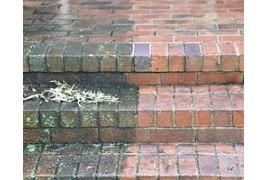 Limpiadores de Humedad para eliminar hongos, verdín, musgo y manchas de humedad