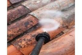 Limpiador de tejados, termina con el verdín, musgo y líquenes