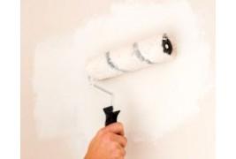 Pinturas anti condensación: elimina el moho para siempre de tu casa.