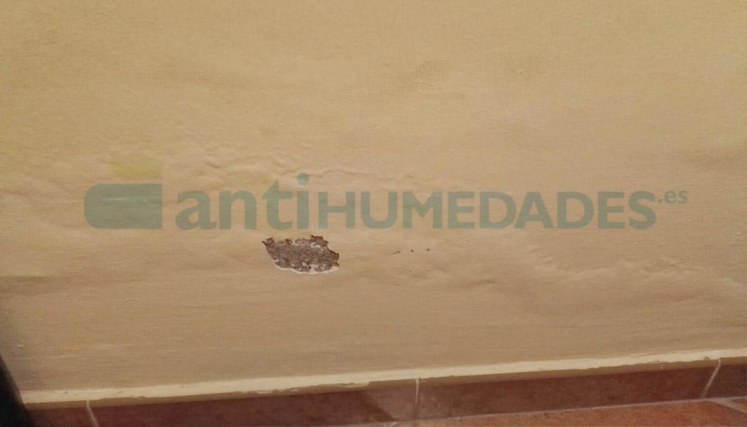 Las capilaridades en paredes provocan desconchones y eflorescencias