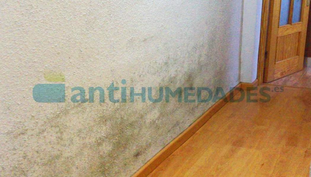 La Pintura Térmica de Sopgal evita las humedades por condensación en las viviendas