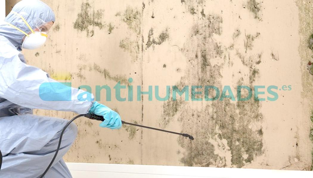 Limpiador Detergente Ecológico de Idroless para interiores