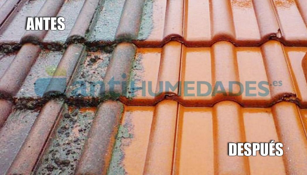Limpiador de Tejados, Fachadas y Suelos en teja